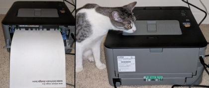 Laser printer cat