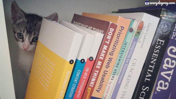 Cat behind books